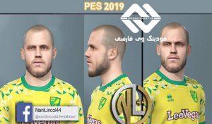 فیس Teemu Pukki برای PES 2019 و PES 2020 توسط nanilincol44
