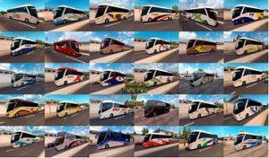 اتوبوس پک ترافیک MEXICAN برای آمریکن تراک 2